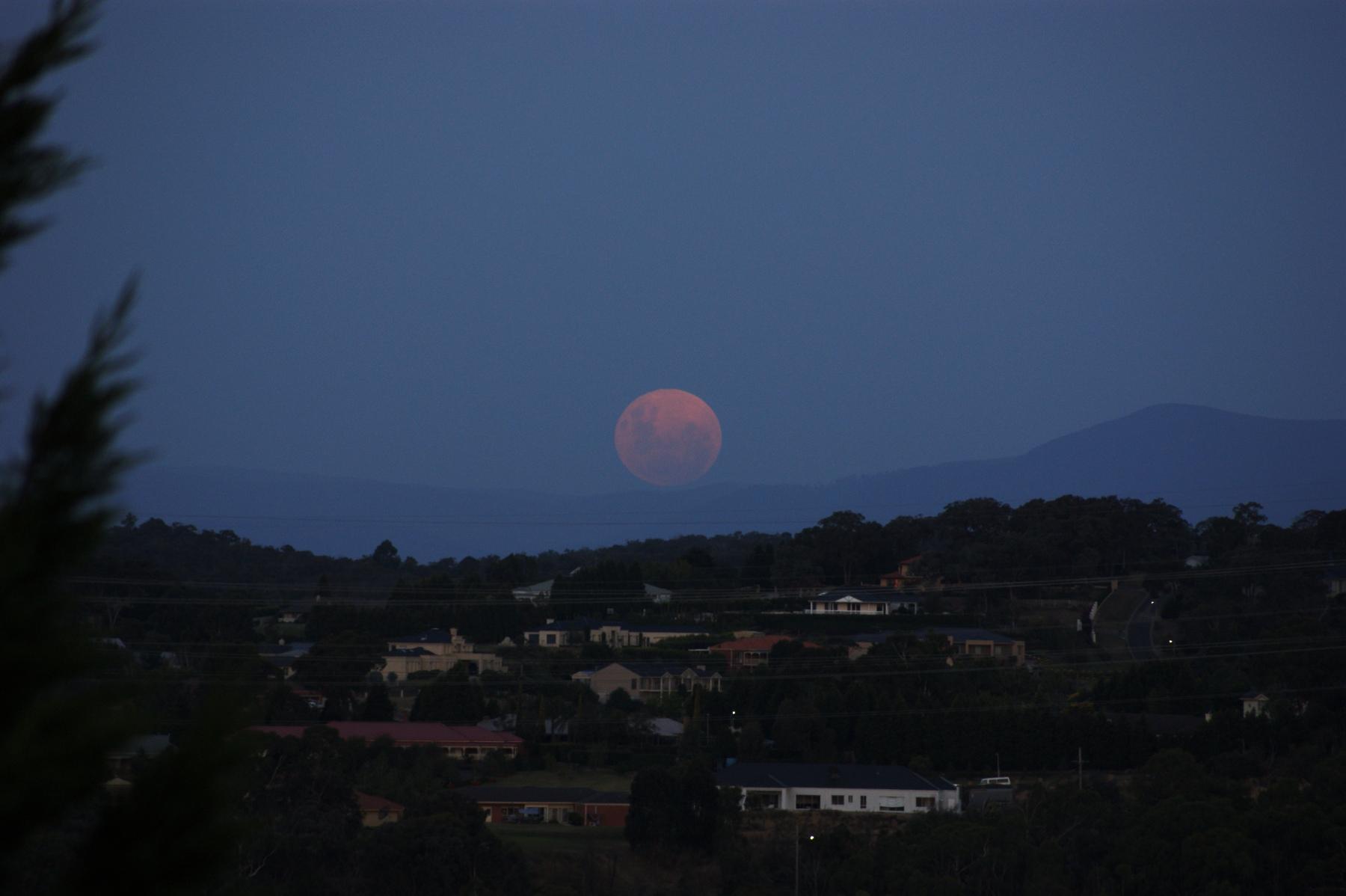 http://www.images.scottphotographics.com/Blue-Moon-Melbourne-Victoria-Australia/Blue-Moon-Melbourne-Victoria-Australia01.jpg