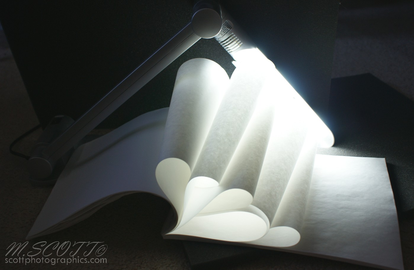 Paper Sculptures – Lighting – DIY | Scott Photographics | Free