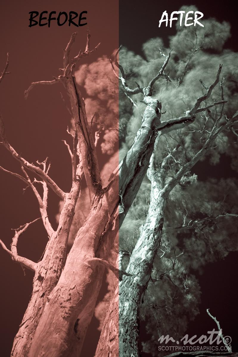 http://www.images.scottphotographics.com/post-processing-infrared-photographs-in-photoshop-gimp/post-processing-infrared-photographs-in-photoshop-gimp.jpg