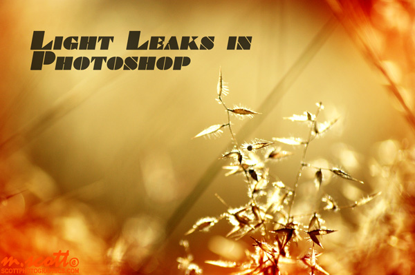 Quick-Masking Light Leaks on Photographs in Photoshop