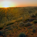 Sunrise over the Red Centre