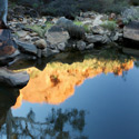 Reflections, Kings Canyon