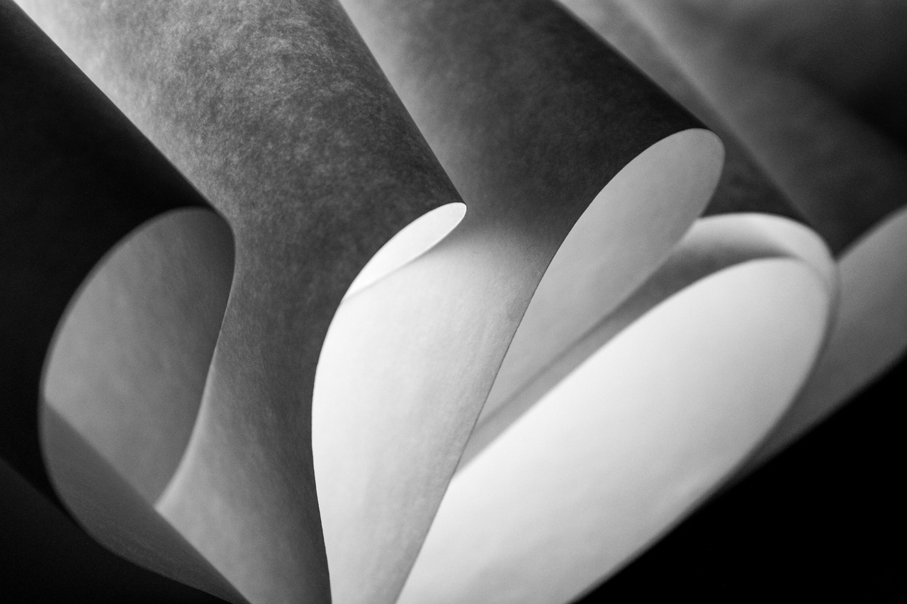Paper Sculpture Curls