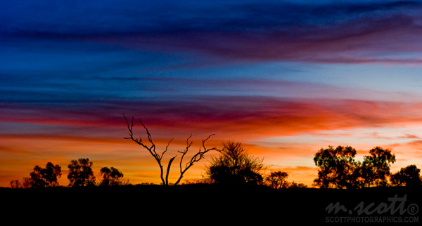 Outback Sunset Silhouettes